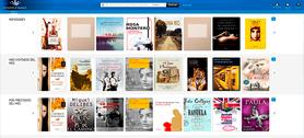Comprar ebook en las bibliotecas Públicas, algunas recomendaciones